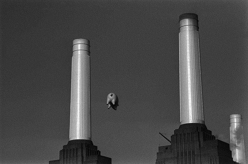 Pink Floyd, Animals Cover Shoot (10A), Battersea Power Station, London, 1976