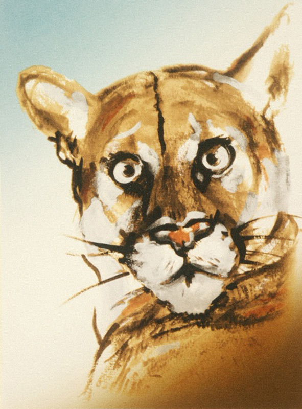 Endangered Species Suite - Florida Panther, 1995