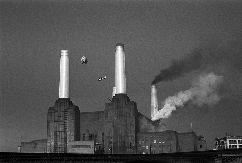 Pink Floyd, Animals Cover Shoot (21A), Battersea Power Station, London, 1976
