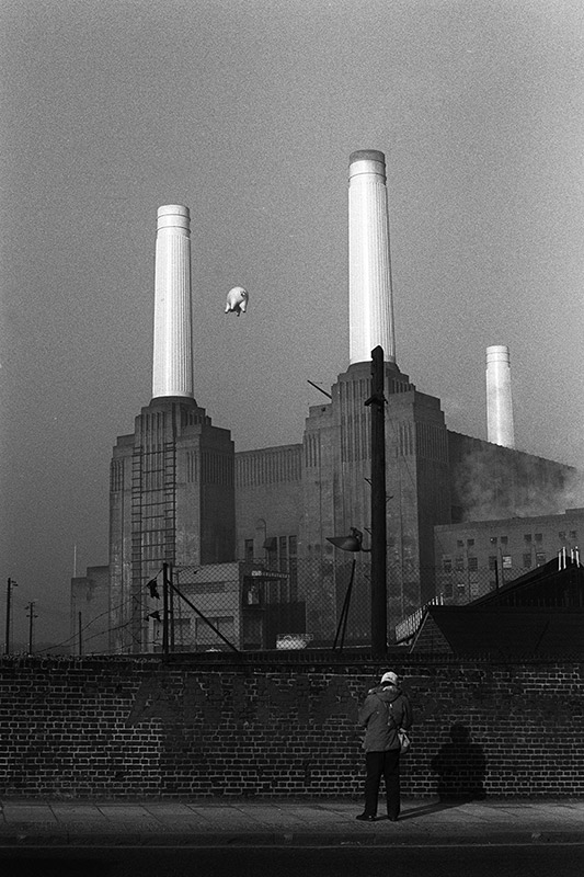 Pink Floyd, Animals Cover Shoot (16A), Battersea Power Station, London, 1976