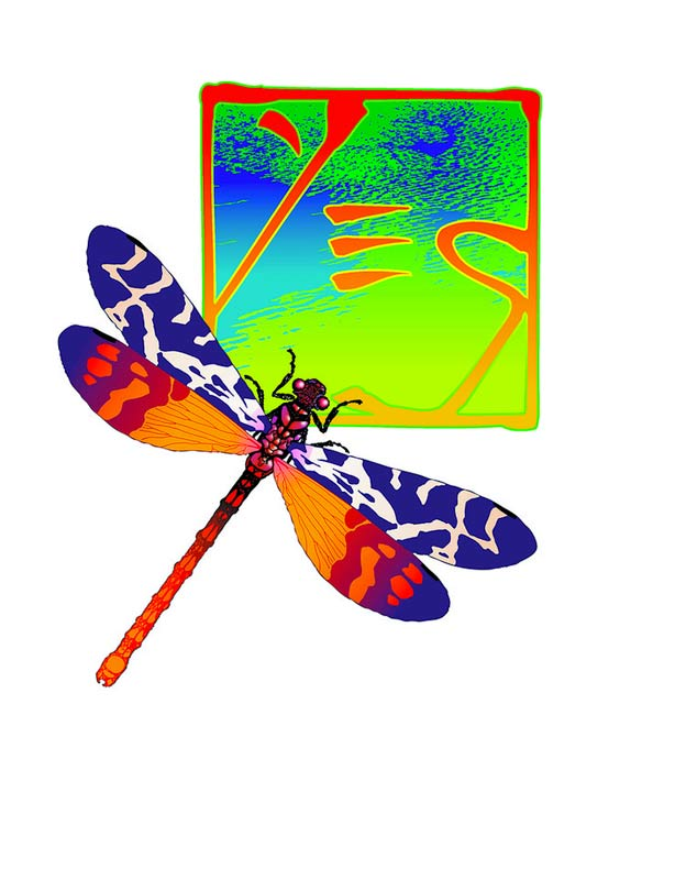 Yes Dragonfly Chop Logo III, 2001