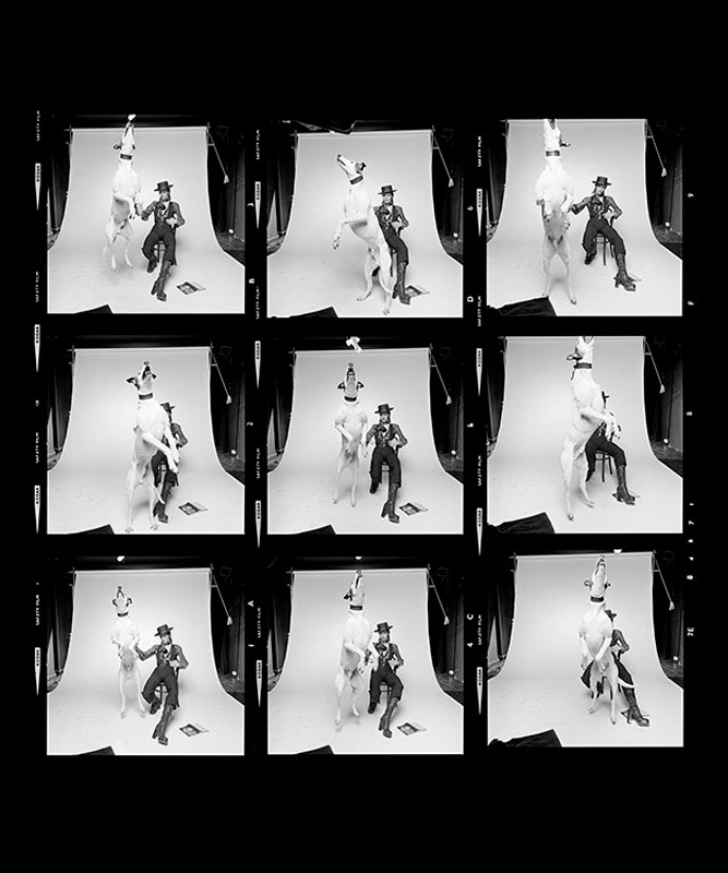 David Bowie, Diamond Dogs Contact Sheet, 1974