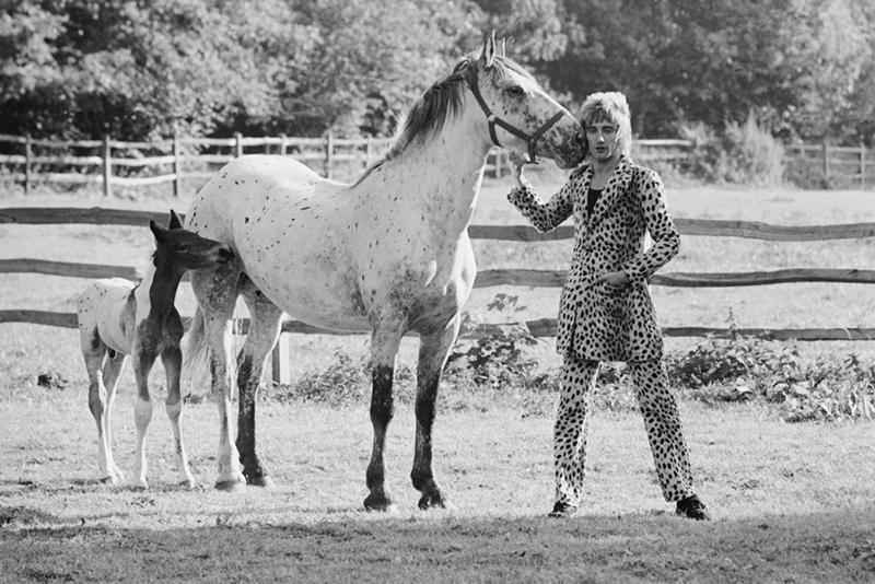 Rod Stewart with his Horse and Foal, Windsor, England, 1971