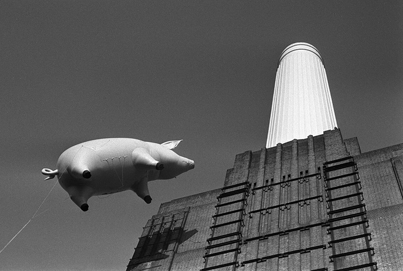 Pink Floyd, Animals Cover Shoot (3A), Battersea Power Station, London, 1976