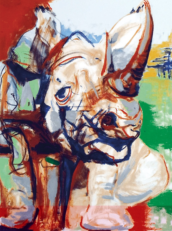 The Range Folio - Rhino, 2005
