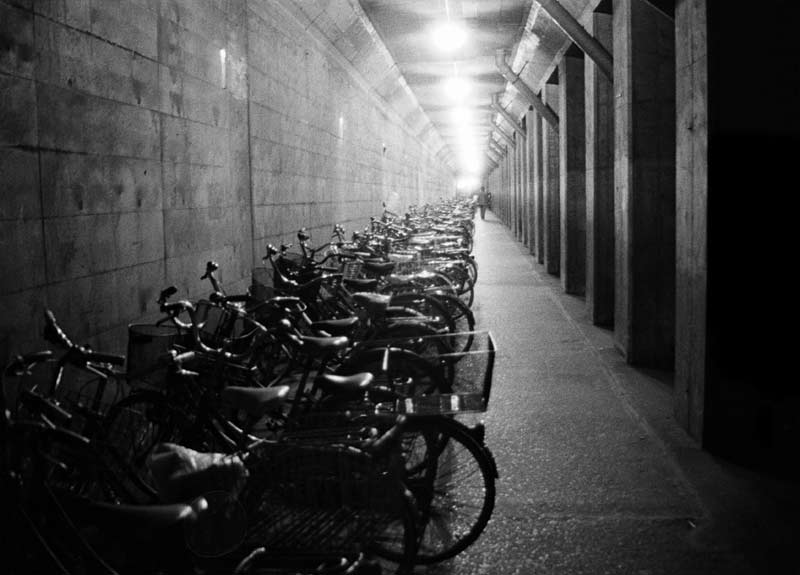 Long Line of Bicycles, 1987