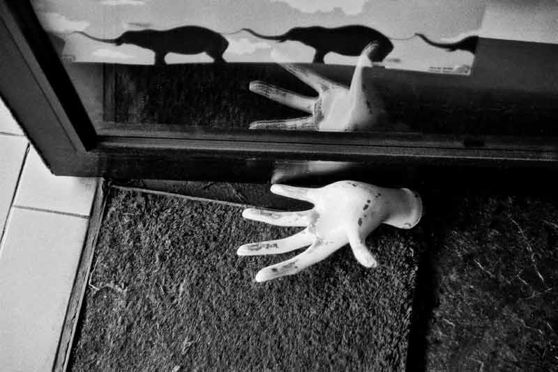 Elephants and Hands, 1989