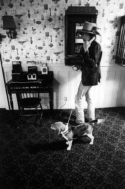 Bob Dylan Using a Payphone with his Beagle, 1975